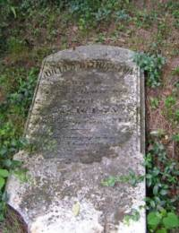 Nace/Julia Withington Bowersox Tombstone 1.JPG